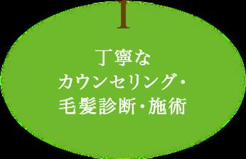 (1)丁寧なカウンセリング・毛髪診断・施術